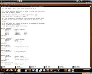 schermata1